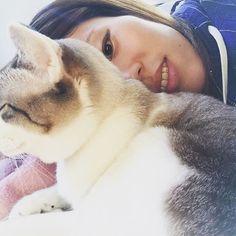 夜勤明けで疲れて帰ってきたら猫が、ひなたぼっこしてた(o'ω'o) そっと寄り添って寝てみたら、手とか顔とかをなめて毛づくろい?してくれた☆ マジ癒された❤️❤️猫の癒し効果ハンパない(ू•ω•ू❁)ଓ♡⃛ #猫部#ふわもこ部#にゃんすたぐらむ #にゃんだふるらいふ #ねこスタグラム #メイ#愛猫#保護猫#いつもは愛想ない#ぜんぜん寄ってもこない#男好きの#小悪魔猫#今日はめずらしい#めっちゃなめてくれた#毛づくろい#猫の気まぐれ#ハンパないけど#たまに見せる#可愛い部分が#猫の良いところ#大好き#さすがに#顔なめられた時は#やめてって叫んでしまったけど#笑#大切な家族の一員