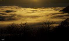 tramonto e nebbia