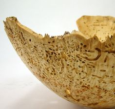 The Ancient Ones  Wormy Box Elder Burl Bowl by makye77 on Etsy, $147.00