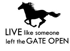Horse-Horse Quote -Horse wall decal-Horse sticker-Horse Quote-Approx. 36  x 24 inches