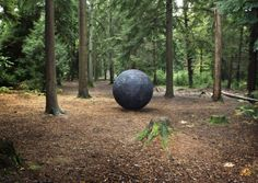 Semiconductor brings Cosmos to Farnham forest...