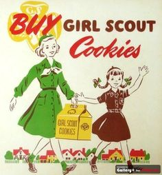 Buy Girl Schout Cookies