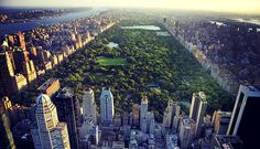 8 Fabulous Things To Do In Central Park in New York City - Forbes Travel Guide