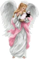 Ferret+ Angel