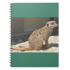 Raintree Earth Design: The Wonderful Meerkat In Gifts