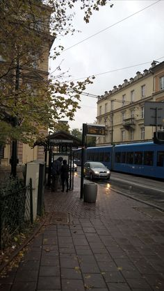 Trams in the street...