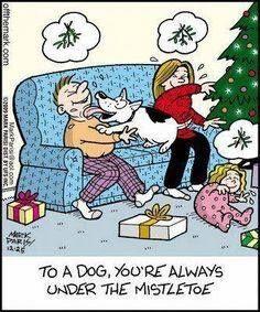To a dog, you're always under the mistletoe ~ Christmas humor Christmas Comics, Christmas Cartoons, Christmas Dog, Christmas Humor, Merry Christmas, Christmas Doodles, Christmas Animals, Christmas 2019, Vintage Christmas
