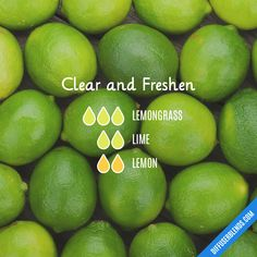 Clear and Freshen - Essential Oil Diffuser Blend Essential Oils Guide, Essential Oil Uses, Doterra Essential Oils, Natural Essential Oils, Young Living Essential Oils, Essential Oil Combinations, Essential Oil Diffuser Blends, Doterra Diffuser, Aromatherapy Oils