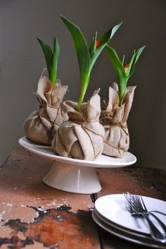 Nice spring decoration: tulips packed in jute. - Nice spring decoration: tulips packed in jute. Garden Care, Wedding Gifts For Guests, Wedding Favors, Party Wedding, Wedding Ideas, Wedding Trends, Diy Wedding, Wedding Reception, Wedding Flowers