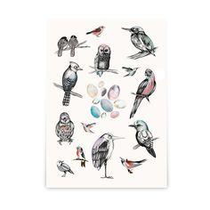 Poster Birds 50x70 cm | Olsson & Gerthel