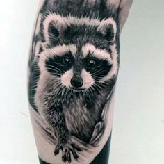 Gentleman With Realistic Raccoon Arm Tattoo