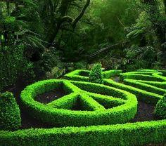 awesome hedges. Edward scisser hands kinda thing