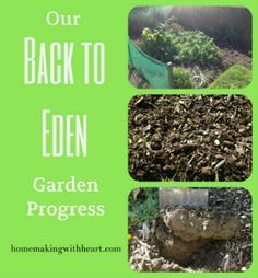 Our 'Back to Eden' garden progress one year on - what we've learned using the no-dig method of gardening. homemakingwithheart.com