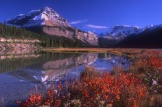 """Jasper National Park, Alberta, Canada - Vinci il viaggio dei tuoi sogni con """"l'Acchiappa Mooncake"""". Scopri come su www.pandistelle.it"""