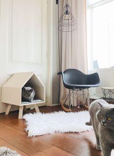 Stylish kattenhuisje voor je interieur (en jij kunt 'em winnen!) - Beautylab.nl Cat Cafe, Armenia, Shag Rug, Interior Design, Lifestyle, Cats, Projects, Ideas, Home Decor