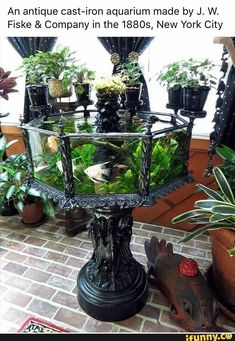 It's very pretty but in my opinion quite small for fish so I would use as a terrarium, obviously :)