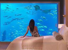 Resultados de la Búsqueda de imágenes de Google de http://elitechoice.org/wp-content/uploads/2008/09/atlantis-hotel-dubai.jpg