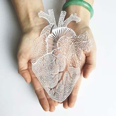 A selection of the anatomical papercut creations by Canadian artistAli Harrison and herLight & Paper studio, whocut paper shapes with delicacy and pre