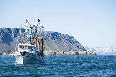 Kleine Troller können schon von  zwei bis drei Mann betrieben werden. So fischen in Alaska nicht nur große Fischtrawler, sondern sehr viele kleine Unternehmen und Fischerfamilien. Ganze Gemeinden in Alaska leben von den Erträgen des Meeres.