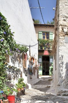 Alonissos Chora, Greece Wonderful Places, Beautiful Places, Greece Pictures, Skiathos, Greece Islands, Beautiful Dream, Greece Travel, Holiday Destinations, Destiny