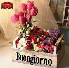 Italian Greetings, Italian Memes, Flower Quotes, Happy Day, Good Morning, Anna, Barbarella, Emoticon, Serendipity