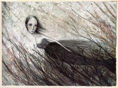 SdF (by Barbara Baldi)