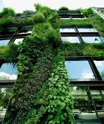 植物 空間 - Google 検索