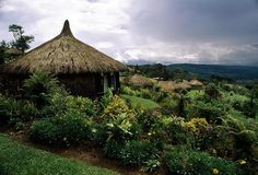 papua Peaceful Places, Beautiful Places, Best Places To Live, Places To Visit, Countries Around The World, Around The Worlds, National Geographic, Papua Nova Guiné, Townhouse