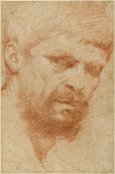 annibale carracci: head of a bearded man Drawing Heads, Life Drawing, Figure Drawing, Painting & Drawing, Face Drawings, Pencil Portrait, Portrait Art, Annibale Carracci, Gian Lorenzo Bernini