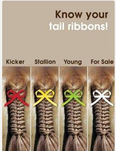 Know your ribbons when you go to a show!