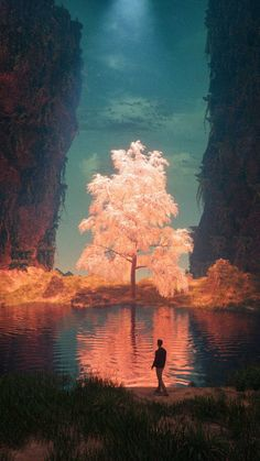 List of Synonyms and Antonyms of the Word: imagine dragons cover art Fantasy Places, Fantasy World, Fantasy Artwork, Fantasy Concept Art, Fantasy Landscape, Landscape Art, Fantasy Art Landscapes, Magical Tree, Fantasy Kunst