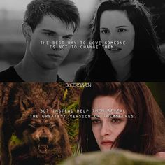 Twilight Jokes, Twilight Saga Quotes, Twilight Saga Series, Twilight Movie, Jacob Black Twilight, Twilight Wolf, Twilight 2008, Robert Pattinson Twilight, Twilight Pictures