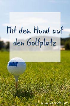 Kärnten bietet sich an für eine Aktivurlaub mit Hund. Hier kannst du deinen Hund auf den Golfplatz mitnehmen, denn Golfen zusammen mit deinem geliebten Vierbeiner macht doppelt so viel Spaß! Nach dem Sport ist vor der Erholung. Die Kärntner Seen bieten die ideale Abkühlung nach einer Golfrunde, für dich und deinen Hund. Deinem Golfurlaub steht nichts mehr im Weg! #golf #golfplatz #golfurlaub #urlaubmithund#sport #österreichurlaub #kärntenurlaub#kärnten #aktivitätmithund Seen, Sport, Recovery, Travel Advice, Pet Dogs, Deporte, Sports