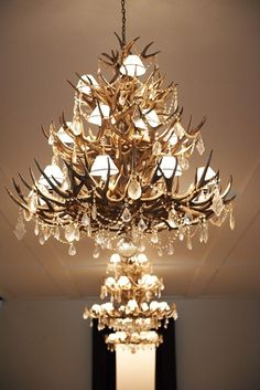moose antler and crystal sconce - Google Search