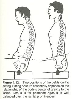 1000 Images About Body Alignment And Anatomy On Pinterest