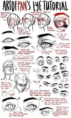 An anon asked me for an eye tutorial   I highly recommend looking reference photos on the internet to get used to drawing different eyes, and also to take photos of yourself to get used to drawing different angles/expressions – Don't just... #Anatomytutorial