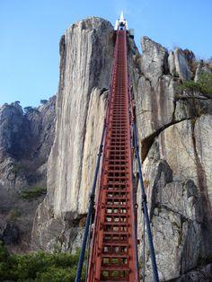 Crazy bridge, national park hike, South Korea
