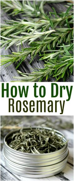 How to Dry Rosemary Step-by-Step Learn how to dry rosemary in three easy methods baking in the oven air drying and using a dehydrator Keep your rosemary fresh for a very long time rosemary herbs foodpreservation dehydrate Rosemary Plant, How To Dry Rosemary, How To Dry Basil, Uses For Rosemary, Herb Recipes, Canning Recipes, Healing Herbs, Medicinal Herbs, Vegetable Garden