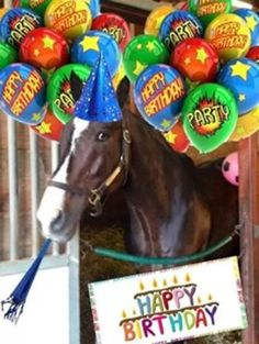 Image result for race track horse birthday Funny Happy Birthday Greetings, Birthday Greetings For Daughter, Funny Happy Birthday Images, Birthday Wishes Funny, Birthday Blessings, Happy Birthday Sister, Happy Birthday Messages, Happy Birthday Quotes, Birthday Greeting Cards
