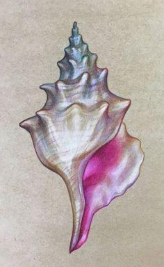 Seashell painting.