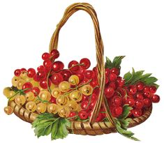 """Photo from album """"ягода"""" on Yandex. L'art Du Fruit, Fruit Art, Strawberry Pictures, Strawberry Art, Vegetable Design, Christmas Decals, Food Clipart, Seed Packaging, Decoupage Art"""