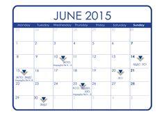 Данъчно-осигурителен календар - юни 2015 г.