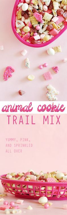 Animal cookie Trail Mix is the perfect snack mix to take along anywhere, especially with littles in tow! recipe via http://ajoyfulriot.com