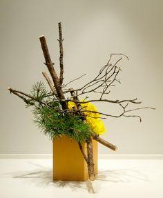 Easter ikebana using a large pine branch and daffodils. Ikebana Flower Arrangement, Ikebana Arrangements, Beautiful Flower Arrangements, Flower Vases, Floral Arrangements, Flower Show, Flower Art, Art Floral, Floral Design