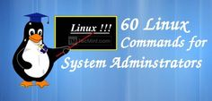 60 Commands of Linux : A Guide from Newbies to System Administrator