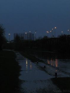 Birmingham-Fazeley Canal - Nuala Hussey
