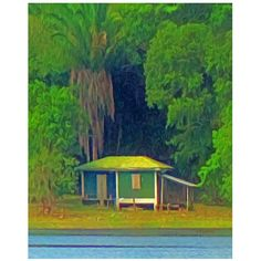 A tiny tropical house is dwarfed by a huge palm tree on New River on the way to the Mayan Ruins of Lamanai in the jungles of Belize. This is digital art