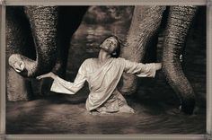 Gregory Colbert Ashes and Snow - Yahoo Image Search Results Theo Theo, Wise Women, Natural World, Animal Photography, Filmmaking, Photo Credit, Photo Galleries, Elephant, Around The Worlds