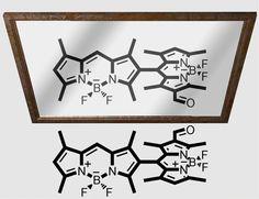 Atropisomeric Dyes: Axial Chirality in Orthogonal BODIPY Oligomers