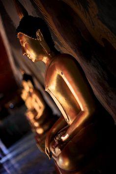 #Buddha gold statues. #Buddhist Art